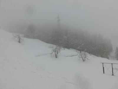 石打丸山スキー場④