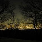 丹沢山からの夜景