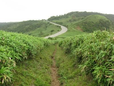 伊豆山稜線歩道