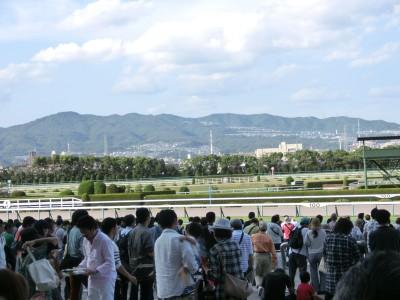 阪神競馬場馬場1