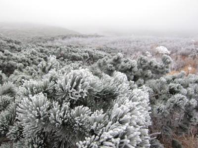 岩手山 10月 雪